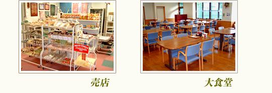 三ツ峠グリーンセンターの売店及び大食堂イメージ1