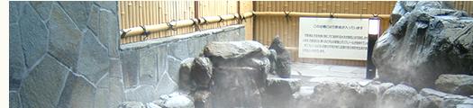 三ツ峠グリーンセンターの各種お風呂イメージ1